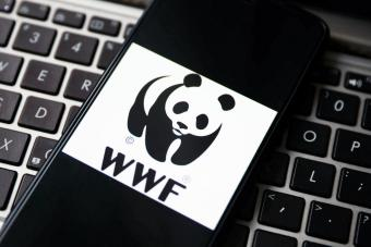 WWF logo is displayed on a mobile phone screen