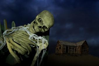 https://cf.ltkcdn.net/charity/images/slide/74623-340x226-haunted-house.jpg
