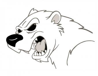 https://cf.ltkcdn.net/cheerleading/images/slide/51595-800x621-Polar-bear-mascot.jpg