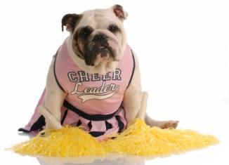 Cheer-mascot.jpg