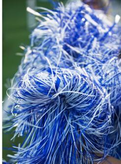 blue and white pom pons