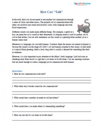 Reading comprehension worksheet about how cats talk