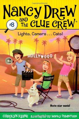 Lights, Camera... Cats!