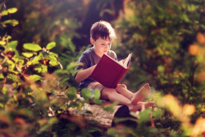 boy reading book in forest