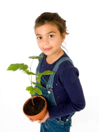 https://cf.ltkcdn.net/childrens-clothing/images/slide/40180-600x800-iStock_000004752422Small.jpg