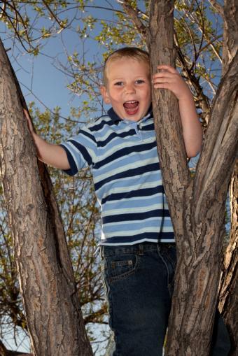 https://cf.ltkcdn.net/childrens-clothing/images/slide/40205-566x848-iStock_000009735820Small.jpg