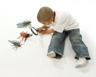 https://cf.ltkcdn.net/childrens-clothing/images/slide/40208-775x619-iStock_000005605442Small.jpg