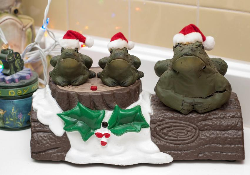 https://cf.ltkcdn.net/christmas/images/slide/252003-850x595-14_Christmas_Frogs.jpg