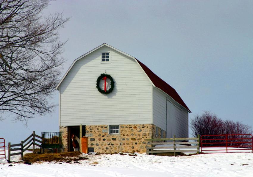 https://cf.ltkcdn.net/christmas/images/slide/253923-850x595-4_christmas-farm.jpg
