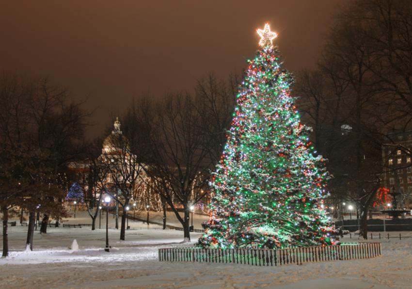 https://cf.ltkcdn.net/christmas/images/slide/253924-850x595-5_christmas-tree-boston-common.jpg
