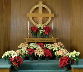 https://cf.ltkcdn.net/christmas/images/slide/127841-459x400-xeve1.jpg
