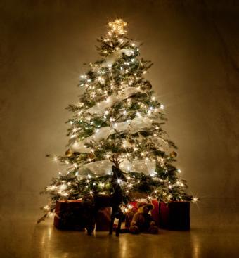 https://cf.ltkcdn.net/christmas/images/slide/162312-667x720-WhiteLightTree.jpg