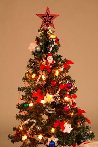 https://cf.ltkcdn.net/christmas/images/slide/162313-567x847r1-FamilyOrnamentTree.jpg