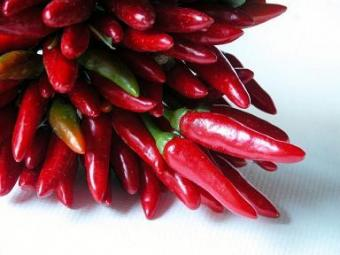 Photo of a bundle of red hot chili peppers