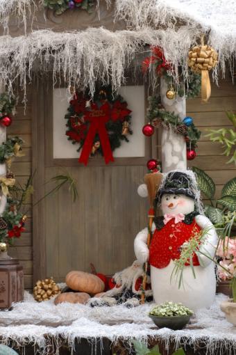 https://cf.ltkcdn.net/christmas/images/slide/189614-567x850-Christmas-Snow-Scene.jpg
