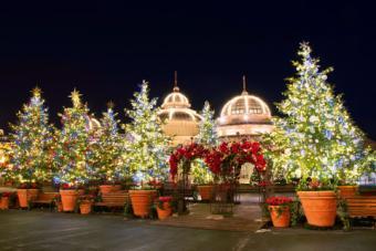 Seoul, Korea Christmas lights at night