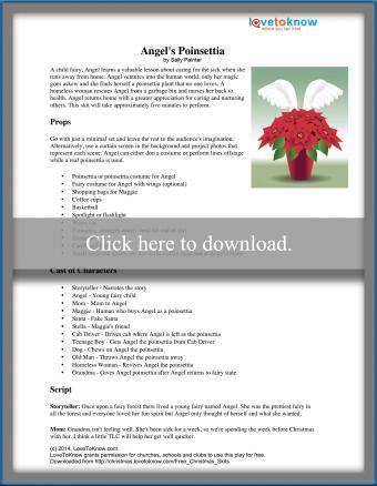 Angel's Poinsettia Christmas play