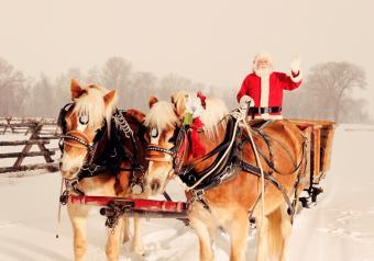 https://cf.ltkcdn.net/christmas/images/slide/253926-850x595-7_santa-sleigh.jpg