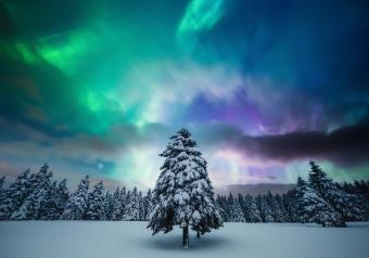 https://cf.ltkcdn.net/christmas/images/slide/253931-850x595-12_Northern_lights.jpg