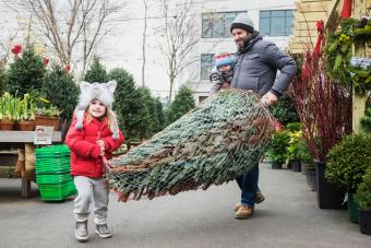 family carrying wrapped Christmas tree