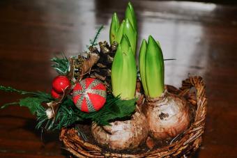 Springtime at Christmas Gift Basket