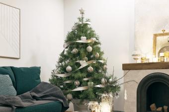 https://cf.ltkcdn.net/christmas/images/slide/275782-850x566-christmas-tree-ideas-ski.jpg