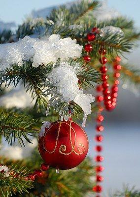 https://cf.ltkcdn.net/christmas/images/slide/970-284x400-lawn13.jpg
