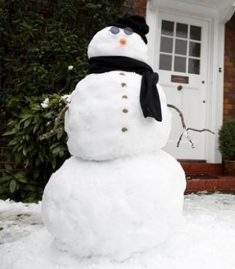 https://cf.ltkcdn.net/christmas/images/slide/975-350x400-lawn4.jpg