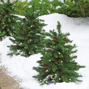 Cordless Led Pre Lit Walkway Tree At