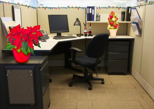 Low key Christmas cubicle with poinsettia