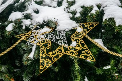 Star with rope Christmas decoration on tree