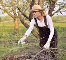 woman pruning doing external spring cleaning