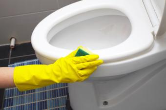 Daily cleaning the toilet