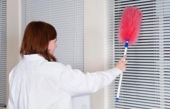 Woman Dusting Window Blinds
