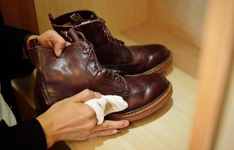 How to Remove Mold From Leather in Simple Ways