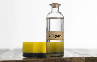 Vinegar On Table