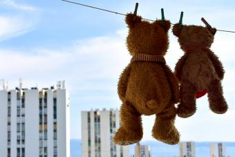 Cute brown Teddy Bears hanging out to dry