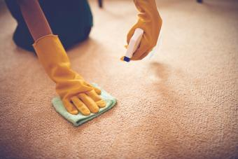 Woman removing stain from the carpet