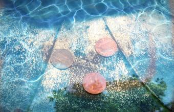 Cooper pennies in a bird bath