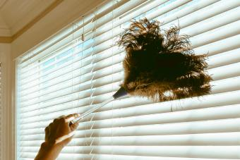 Woman Cleans Blinds with Feather Duster