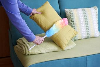 Woman hands with dust cleaner