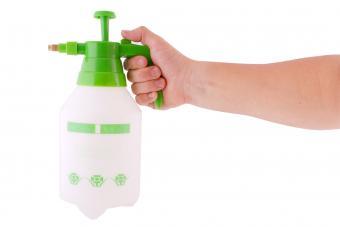 Pressure sprayer bottle in hand