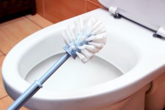 Toilet brush on a toilet bowl