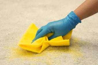 Woman in blue gloves cleaning carpet