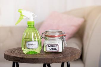 White vinegar in spray bottle and baking soda in glass jar