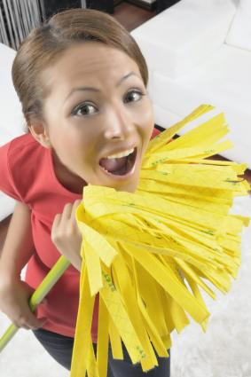 House Cleaning Tips | LoveToKnow