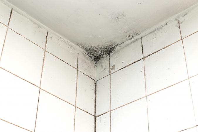 Charmant How To Clean Mold From Your Bathroom Ceiling