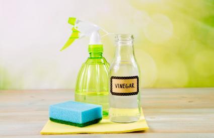 white vinegar in spray bottle