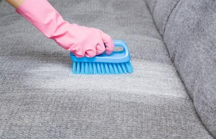 removing stain from gray sofa with brush