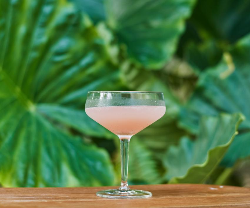 https://cf.ltkcdn.net/cocktails/images/slide/252409-850x708-papa-doble-daiquiri.jpg